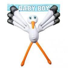 raam ooievaar baby boy